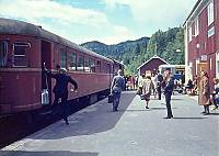http://pix.njk.no/115//s115861-f2918-3013-Numedalsbanen-Roedberg-1967-07-12_700.jpg