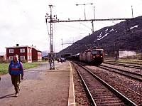 https://pix.njk.no/117//s117950-f8108-2273-Bjornfjell-010795.jpg