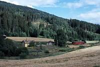 http://pix.njk.no/149//s149945-Numedalsbanen-Traaen-1988-08-13_900.jpg