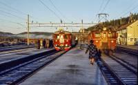 https://pix.njk.no/206//s206345-Soerlandsbanen-Nelaug-1972-11-15_1280-fotoEWJ.jpg