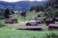 https://pix.njk.no/208//s208360-Numedalsbanen-Selsteigen-1988-08-13_3000-fotoEWJohansson.jpg