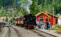 http://pix.njk.no/84//s84746-_24_KEH-Stordriftsdag_Setesdal.jpg